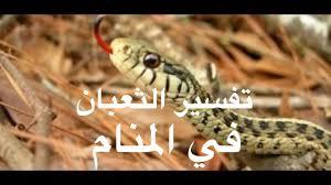 نتيجة بحث الصور عن رؤية الثعبان فى المنام