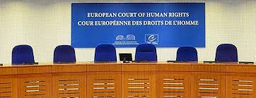 Image result for European Court of Human Rights (ECHR) wikimedia commons