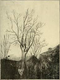 """Image <b>from</b> page 307 <b>of</b> """"Annales du <b>Muse colonial de</b> Marsei ..."""