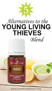 5 Alternative Blends To Young Living Thieves Plus A Diy