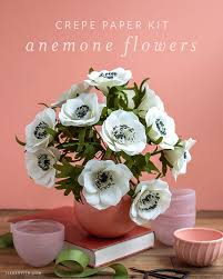 Paper Flower Kit Video Tutorial Crepe Paper Anemone Flower Kit Lia Griffith