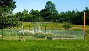 simple effective garden fence
