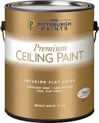 ceiling white paintPremium Ceiling White Interior Flat