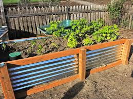 metal raised garden beds ideas