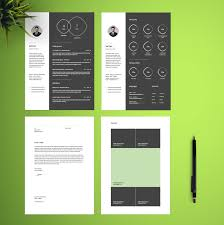Free Infographic Resume And Cv Template In Illustrator Ai Format