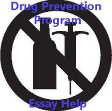 guide to writing academic essay about drug program essay about drug program