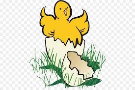 chicken hatching clipart. Modren Hatching Chicken Hatching Clip Art  Hatch Cliparts Throughout Clipart C