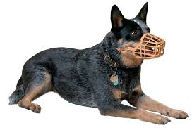 Baskerville Muzzle Size Chart Baskerville Dog Muzzle Stop Biting And Chewing