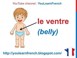 Body Part Chart For Toddlers French Lesson 33 Body Parts French Vocabulary Parties Du Corps English Subtitles Partes Del Cuerpo