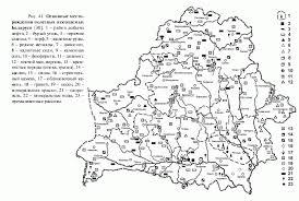 Реферат Горючие полезные ископаемые Беларуси com  Горючие полезные ископаемые Беларуси