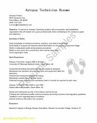 Inspirational Supply Technician Resume Business Document