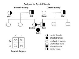 A Pedigree Is A Chart That Shows Pedigrees Cells And Heredity