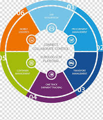 Infographic Pie Chart Template Business Diagram Supply