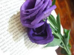 purple rose wallpaper download. Plain Rose Download Original Size  Intended Purple Rose Wallpaper Download V