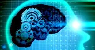 Мышление виды процессы формирование Психология Реферат Доклад