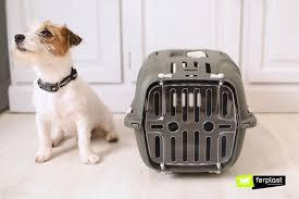 <b>Ferplast Переноска</b> для кошек и собак <b>JET 10</b>, 47х32х29см купить ...