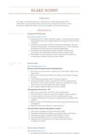 Engagement Manager Resume samples