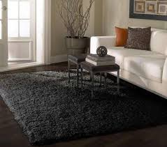 fresh contemporary rugs for living room of nuloom venice collection alexa soft plush area rug 4 x 6 at