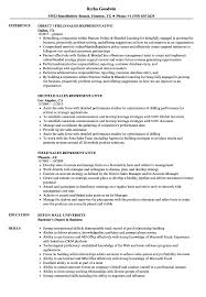 Sales Representative Resume Sample Field Sales Representative Resume Samples Velvet Jobs 45