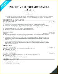 Secretary Resume Template Delectable Secretary Resume Examples Zippappco
