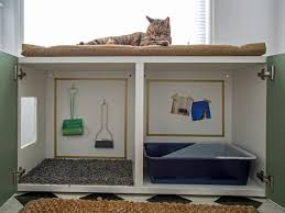 Best Litter Box Design How To Conceal A Kitty Litter Box Inside A Cabinet Hgtv