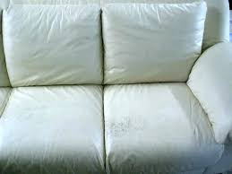 scratches on leather couch how to repair scratches on leather couch re dye leather couch dog