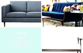 best furniture for dogs dog owners cat fabrics couch leather sofa do