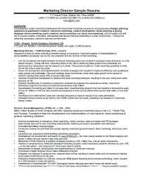 Sales And Marketing Manager Resume Sample Marketing Director Resume