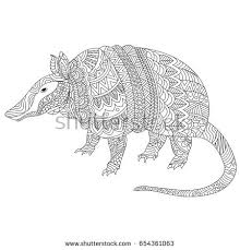 Small Picture Armadillo Stock Images Royalty Free Images Vectors Shutterstock