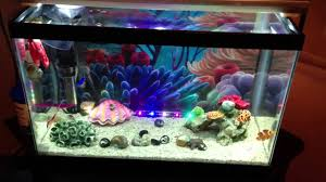 Funny Fish Tank Decorations 5g Finding Nemo Tank Youtube