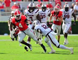 Georgia Bulldogs Could Have Tailback Overflow In 2014