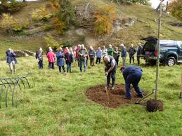 more than 25 people turned out to celebrate the life of ian wallace by witnessing the planting by members of ian s family of a wild service tree in seven