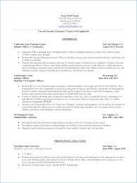 Marine Infantry Resume Resume Layout Com