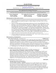 It Resumes Epicnsultant Resume Examples Mainframe Resume For Consultant Sle 45