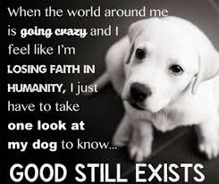 Dog Quotes Inspirational Extraordinary 48 Inspirational Quotes Every Dog Lover Should Read Miscellaneous