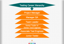 Kpmg Organizational Structure Chart Kpmg Career Hierarchy Chart Hierarchystructure Com