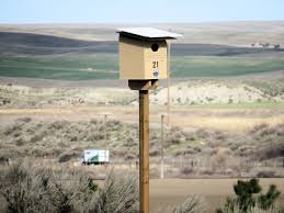 washington state penitentiary inmates are helping blue mountain audubon society build nest boxes for barn owls
