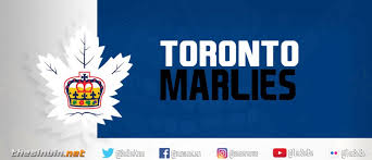 Injuries Change The Marlies Goaltending Perspective The