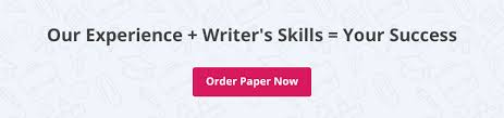 write an essay online professional essay writing service  cta