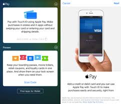 apple wallet and apple pay
