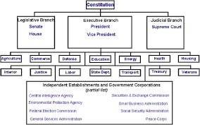 State Government Flow Chart Kinda Blank Govt Chart Teaching Government Social Studies