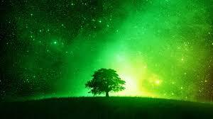 glowing green tree desktop background