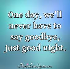 One Day Well Never Have To Say Goodbye Just Good Night