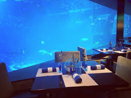 underwater restaurant disney world. Sentosa Island, Singapore - Underwater Restaurant Disney World
