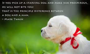 Dog Quotes Love And Loyalty Impressive Famous Dog Quotes Which Will Make You Fall In Love With Your Pet