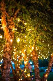 beautiful outdoor lighting solar light strings i have had small white lights in my beautiful outdoor lighting
