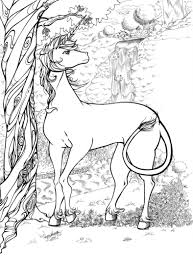 Unicorns are such magical creatures; Unicorn Coloring Pages For Adults Best Coloring Pages For Kids