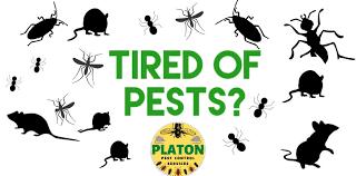 Platon Pest Control Services - Home
