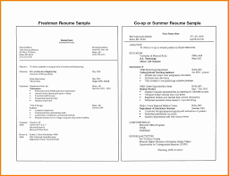 College Student Resume Examples Lovely Simple Resume Examples For