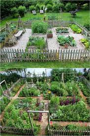 start your best vegetable garden